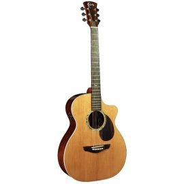 FG2HCE - PJE Legacy Earth Electro (2-Piece Rosewood)