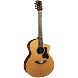 FG2NCE - PJE Legacy Neptune Electro (2-Piece Rosewood)